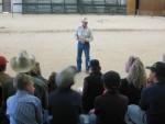 horse training (18)